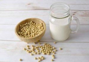 yogurt di soia bioenergy nutrition integratori sportivi alimentazione cuneo