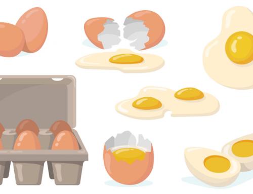 Le proteine dell'uovo
